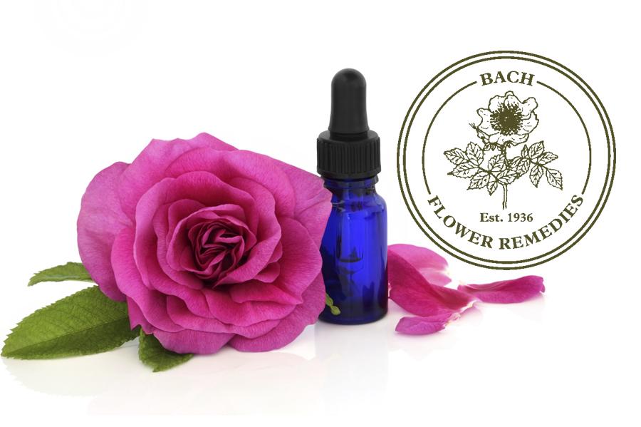 fiori-di-bach-veterinaria-sassuolo-baggiovara